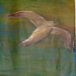 Fliegen 2004