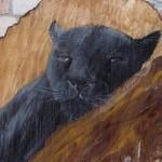 Panther 2012